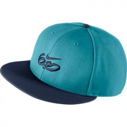 NIKE 6.0 HAT BASIC LOGO...