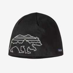 Patagonia Beanie Hat Fitz...