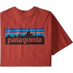 Patagonia P-6 Logo...