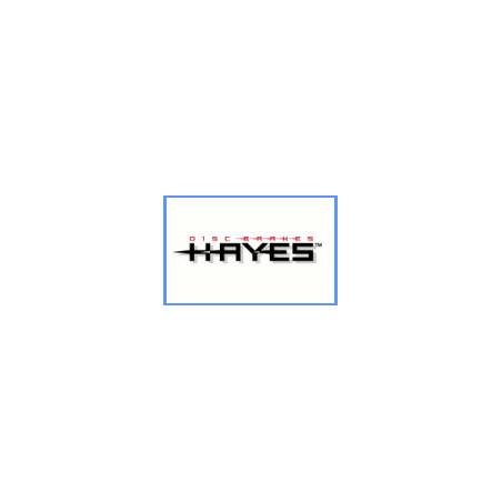 logo HAYES