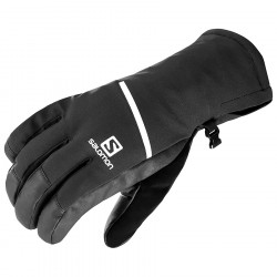Salomon Propeller One Gloves black